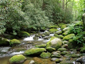 Smoky-Mountains-Location-1